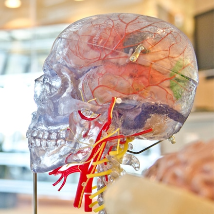 Anoxic Brain Injury Sustained at Nursing Home